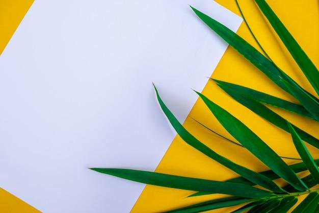Folhas de bambu tropical com papel branco em branco Foto Premium