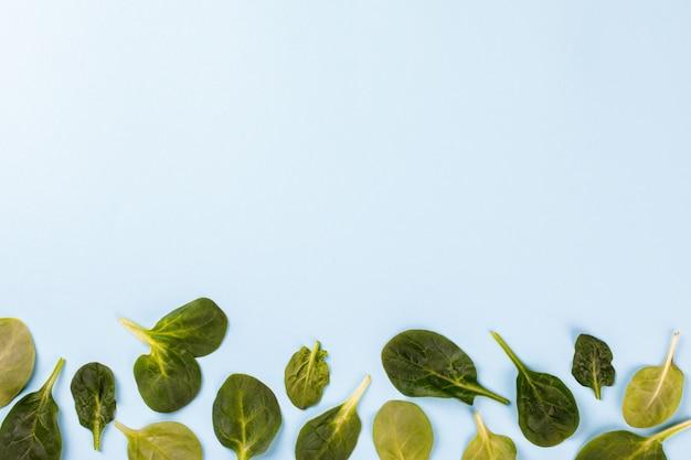 Folhas de espinafre. vitamina verde de verão. Foto Premium