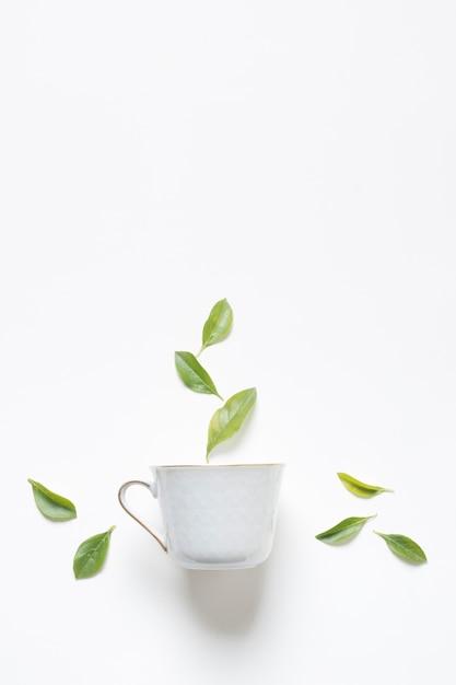 Folhas de limão verde ervas sobre a xícara de chá, contra um fundo branco Foto Premium