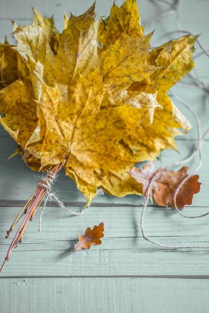 Folhas de outono bonitas no conceito de madeira outono Foto gratuita