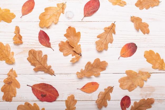 Folhas de outono em um fundo de madeira branco. flat lay, vista de cima, copie o espaço. Foto Premium