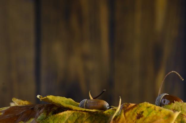 Folhas de outono em um fundo marrom placa de madeira Foto Premium