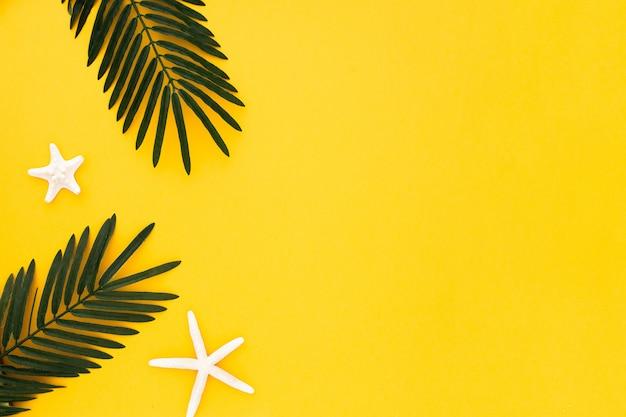 Folhas de palmeira com estrela do mar sobre fundo amarelo Foto gratuita