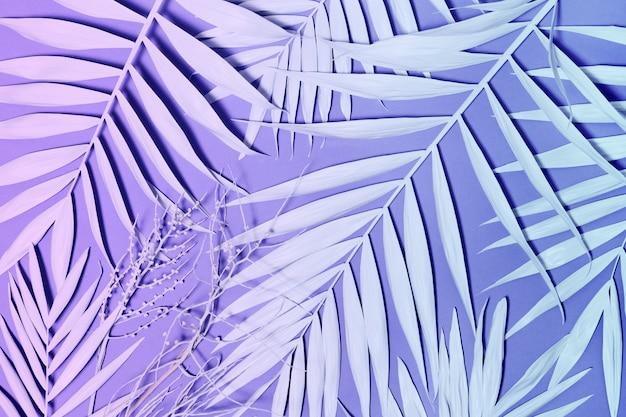 Folhas de palmeira de néon colorido Foto Premium