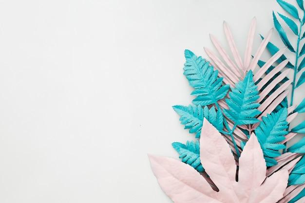 Folhas de palmeira tropical em fundo branco com copyspace Foto gratuita