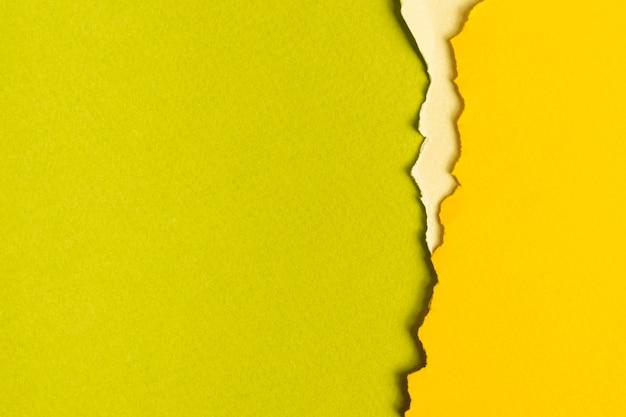 Folhas de papelão tonificado verde com espaço de cópia Foto gratuita
