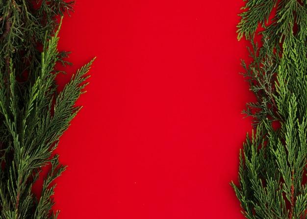 Folhas de pinheiro, sobre um fundo vermelho, com espaço de cópia Foto gratuita