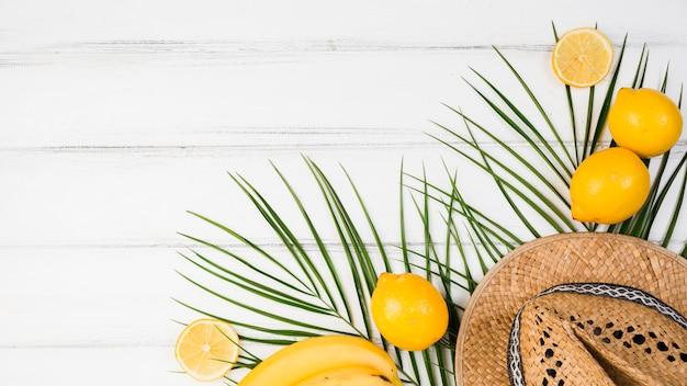 Folhas de plantas perto de cítricos e chapéu Foto gratuita