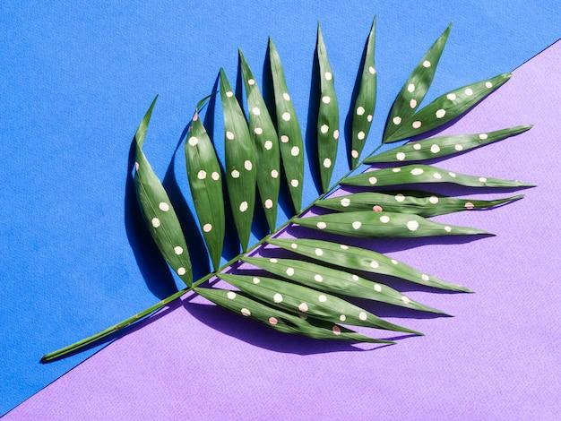 Folhas de samambaia pontilhada em fundo azul e violeta Foto gratuita