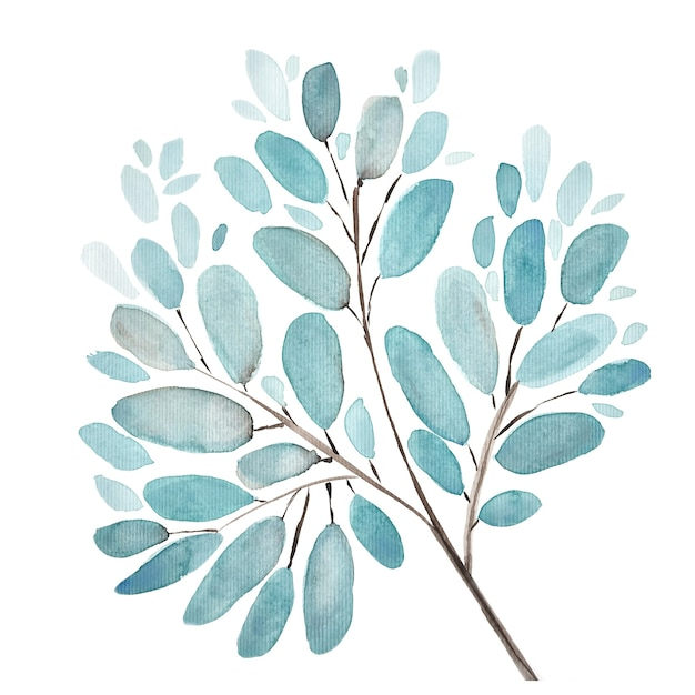 Folhas e ramos de fundo aquarela ilustração. conjunto de elementos florais de pintados à mão. ilustração botânica em aquarela. eucalipto, oliveira, folhas verdes. Foto Premium