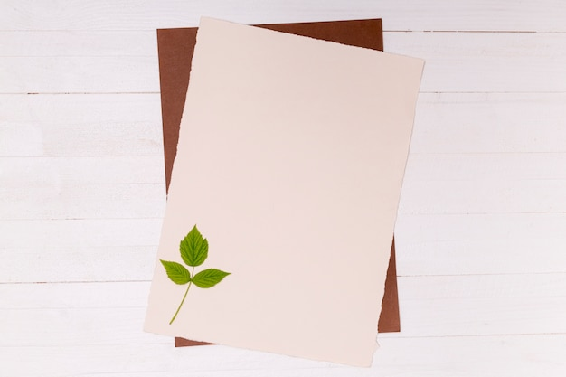 Folhas pequenas de bétula prata na superfície do espaço de cópia Foto gratuita