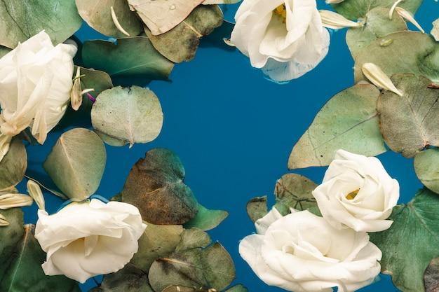 Folhas planas e pétalas na água azul Foto gratuita