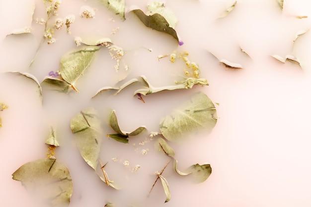 Folhas planas leigos em água cor-de-rosa Foto gratuita