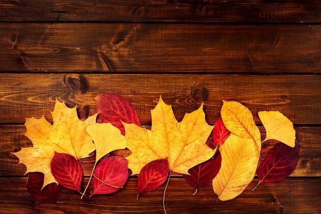 Folhas secas coloridas no fundo de madeira Foto Premium