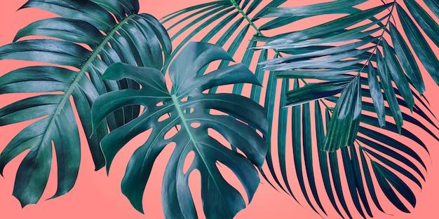 Folhas tropicais de verão no fundo de cor coral Foto Premium
