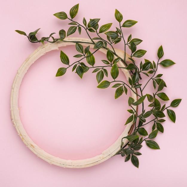Folhas verdes decorado no quadro de círculo vazio de madeira contra o pano de fundo-de-rosa Foto gratuita