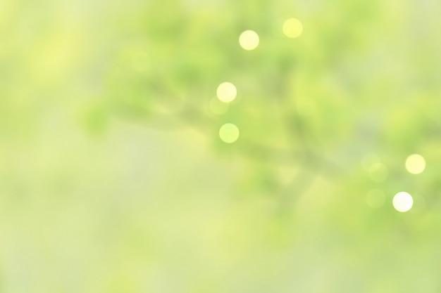 Folhas verdes pastel naturais desfocadas Foto Premium