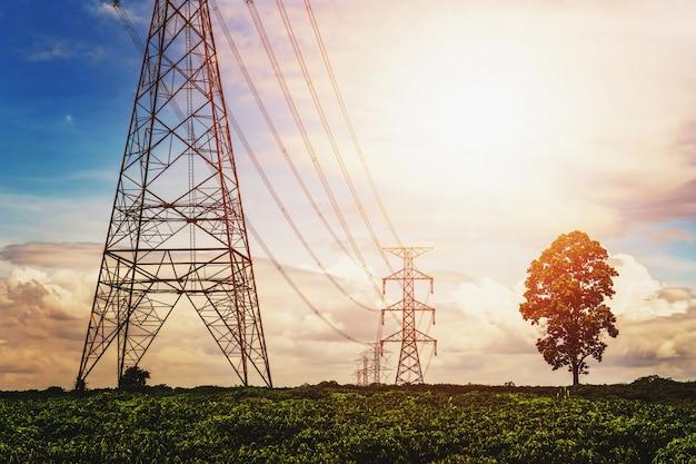 Fonte de alimentação de alta tensão e linha de energia com o nascer do sol e a árvore de fundo Foto Premium