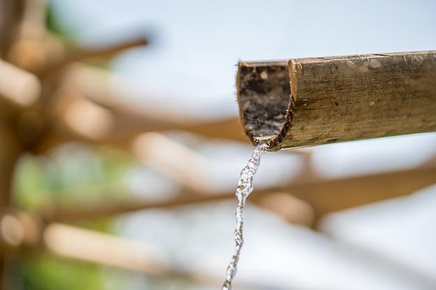 Fonte de bambu com água Foto Premium