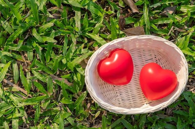 Forma de coração vermelho casal sobre fundo verde natural no jardim ao ar livre Foto Premium