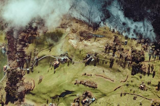 Foto aérea de árvores e casas Foto gratuita