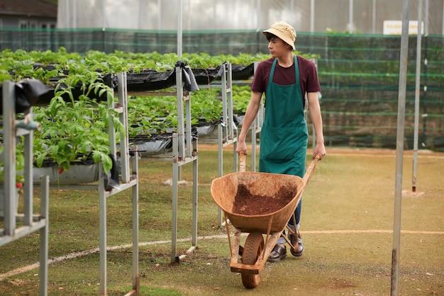 Foto completa do jardineiro masculino indo em direção à câmera, empurrando o vagão com o solo Foto gratuita