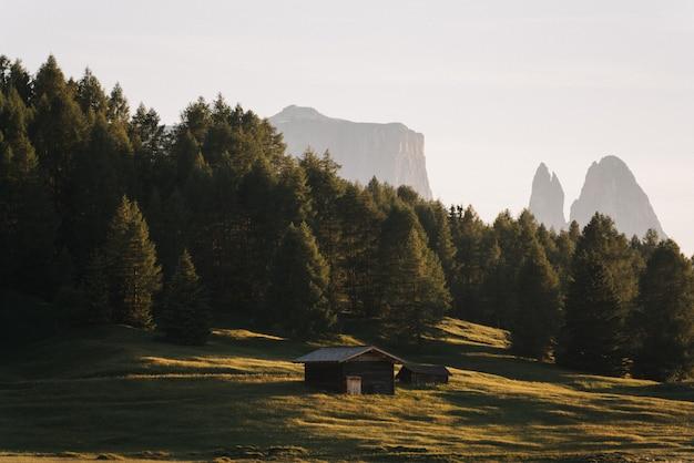 Foto da pequena cabana de madeira em um campo de grama, rodeado por árvores Foto gratuita