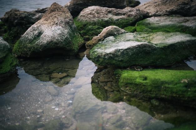 Foto de alto ângulo de pedras cobertas por musgo verde na água Foto gratuita