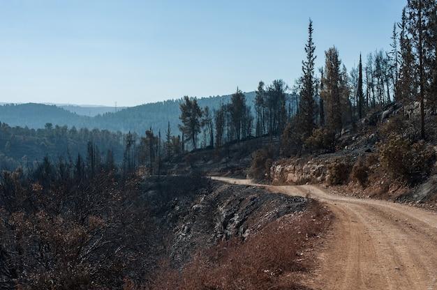Foto de alto ângulo de uma estrada arenosa nas montanhas Foto gratuita