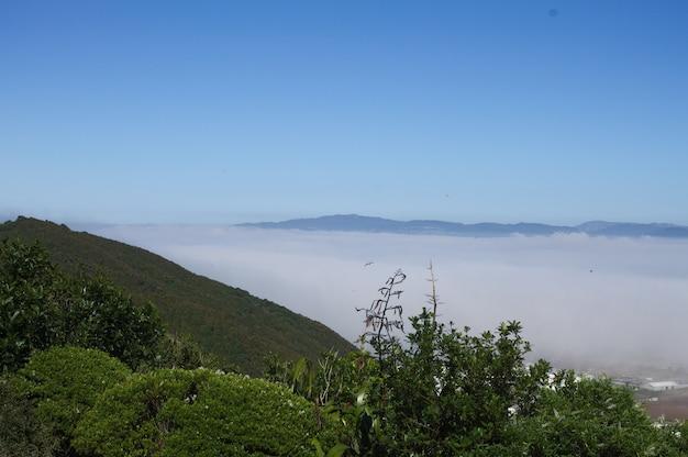 Foto de alto ângulo do vale hutt na nova zelândia coberto de névoa Foto gratuita