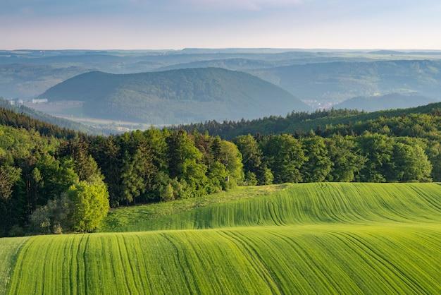 Foto de bela paisagem de campos verdes nas colinas, rodeadas por uma floresta verde Foto gratuita