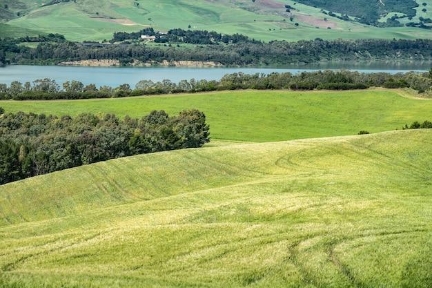Foto de grande angular de campos verdes em frente à água com árvores e arbustos crescendo no topo Foto gratuita