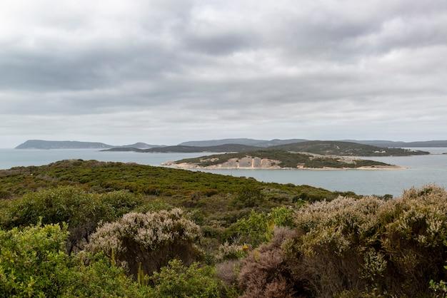 Foto grande angular das ilhas e da vegetação do national anzac centre na austrália Foto gratuita
