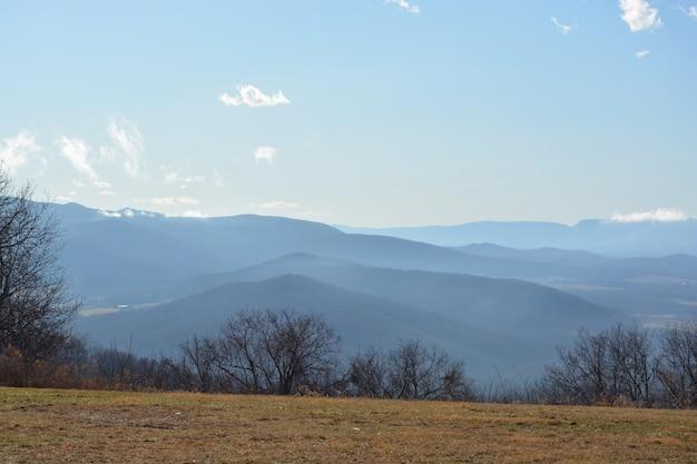 Foto grande angular de montanhas e árvores em um dia de nevoeiro Foto gratuita