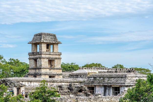 Foto grande angular de palenque, no méxico, cercada por árvores sob um céu azul claro Foto gratuita