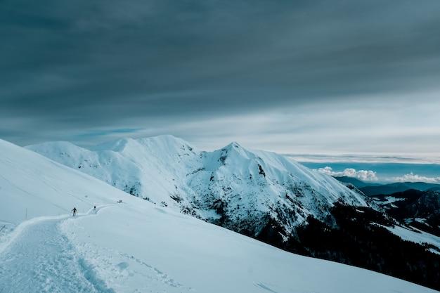 Foto panorâmica de montanhas cobertas de neve com árvores alpinas sob céu nublado Foto gratuita