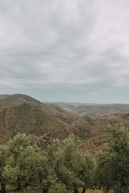 Foto vertical de alto ângulo de uma cadeia de montanhas com árvores verdes sob o céu nublado Foto gratuita