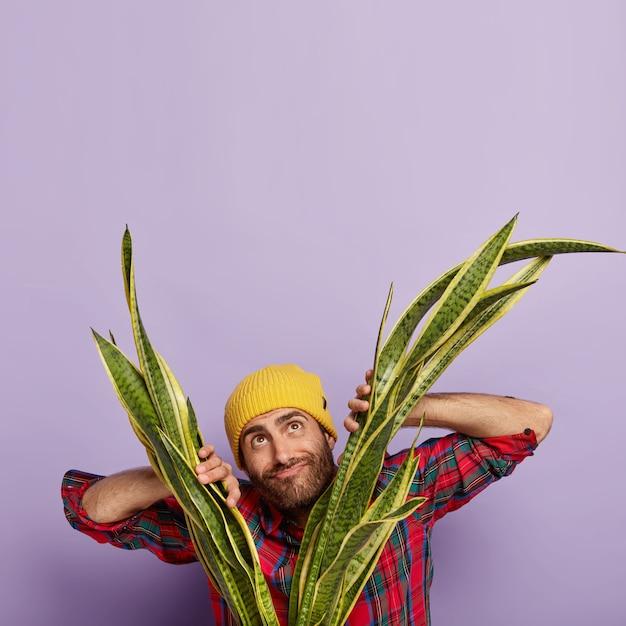 Foto vertical de homem feliz e pensativo com brislte Foto gratuita