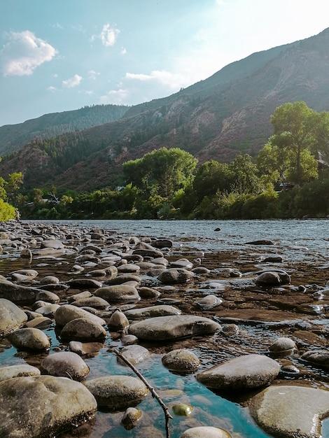 Foto vertical de pedras na água com uma montanha arborizada Foto gratuita
