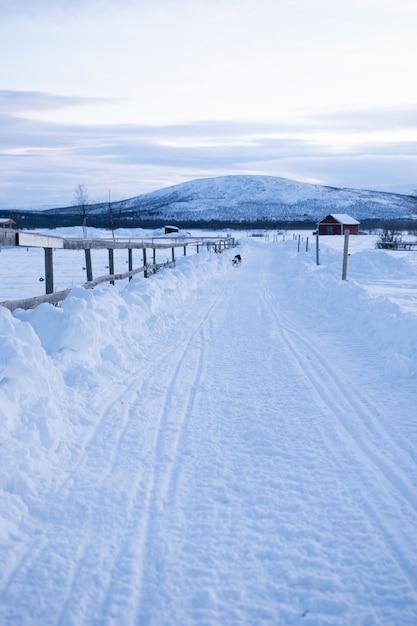 Foto vertical de um [athway no meio de campos nevados com um cachorro à distância na suécia Foto gratuita