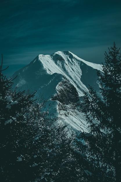 Foto vertical de uma bela montanha coberta de neve e pico emoldurado por árvores alpinas Foto gratuita