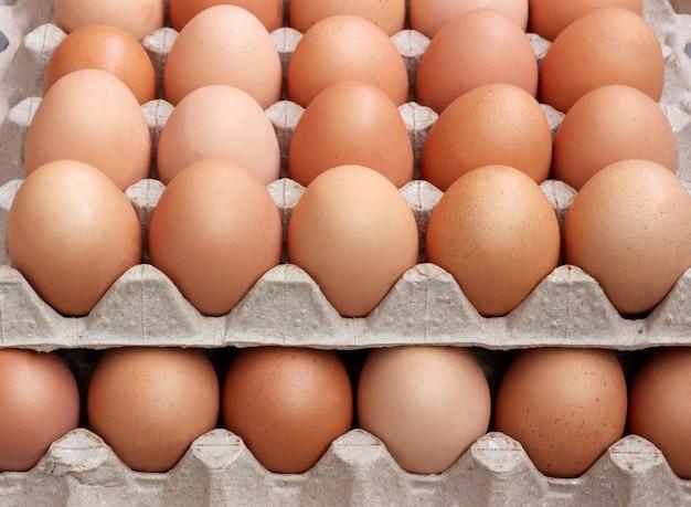 Frango fresco ovos marrons em embalagem Foto Premium