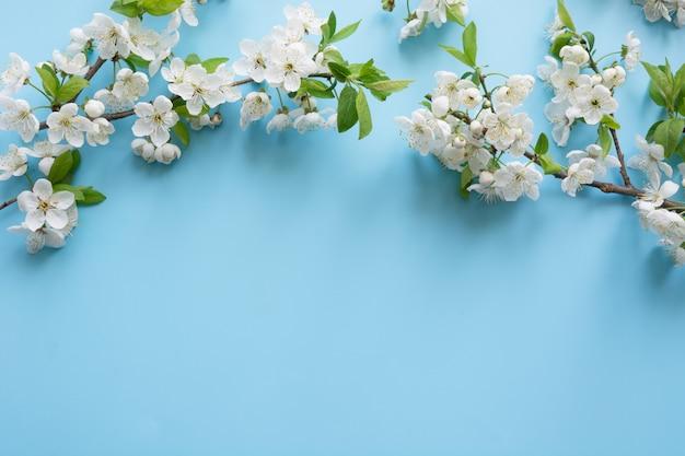 Fronteira de ramos de flor branca de primavera em azul pastel. floral. fundo copyspace Foto Premium
