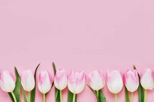 Fronteira de tulipas cor de rosa em fundo rosa. dia das mães, dia dos namorados, conceito de comemoração de aniversário. copie o espaço, vista superior Foto Premium