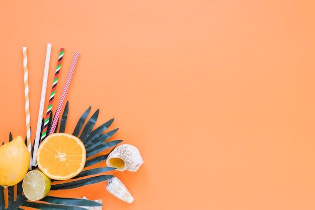 Frutas cítricas com palhas, folhas de palmeira e conchas Foto gratuita