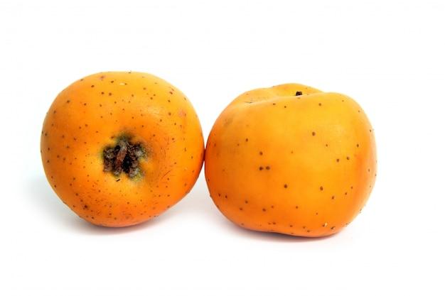 Frutos de inverno tecojote crataegus pubescens stipulacea Foto Premium