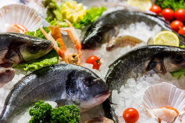 Frutos do mar Foto Premium