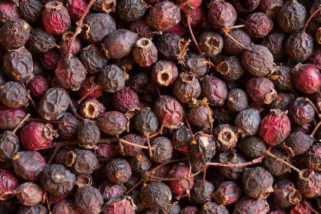 Frutos secos de espinheiro. produção de bebidas naturais de bagas. Foto Premium