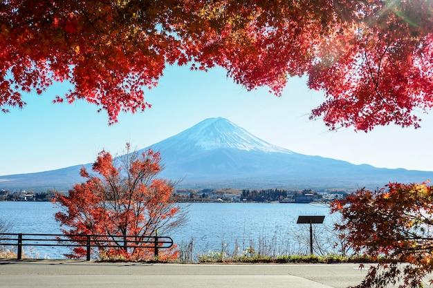 Fuji montanha na temporada de outono Foto Premium