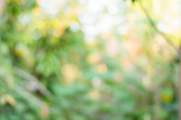 Fundo abstrato da natureza não na agudeza Foto Premium